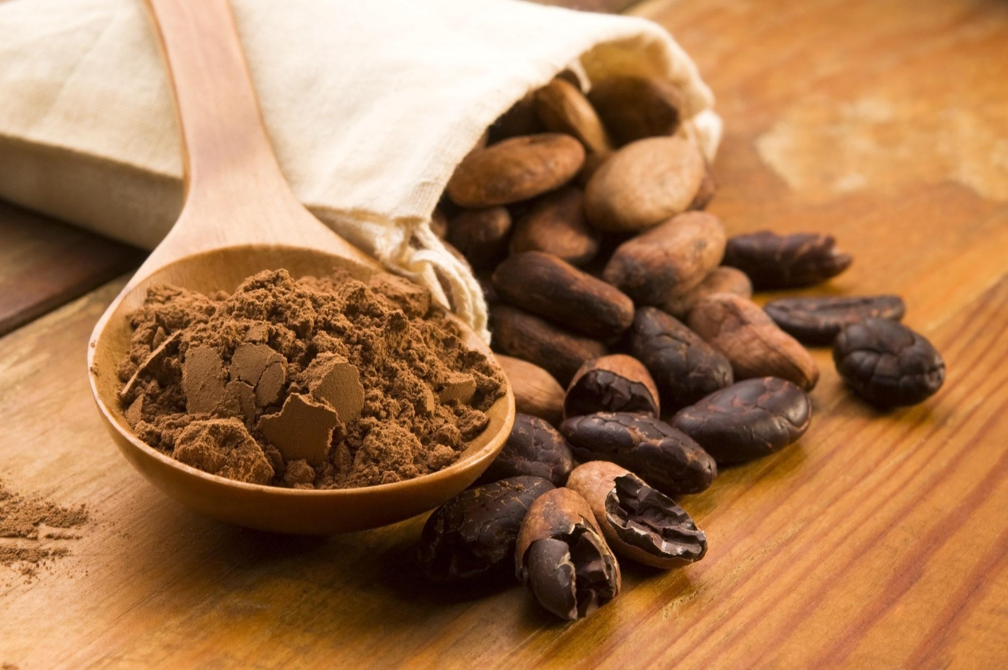 cacao-proprietà