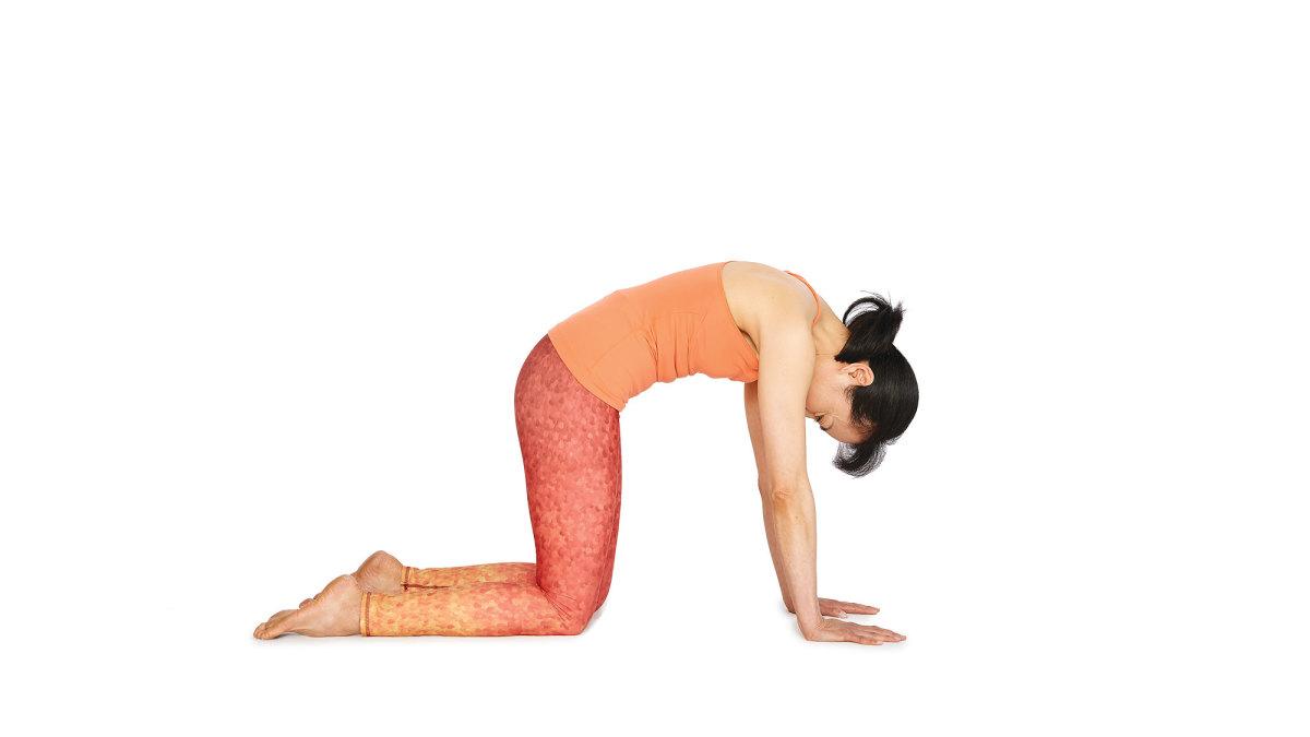 marjariasana-yoga