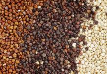 quinoa-proprieta-benefici