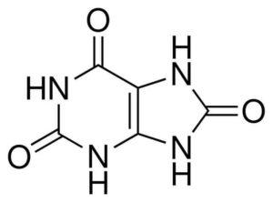 acido-urico-chimica