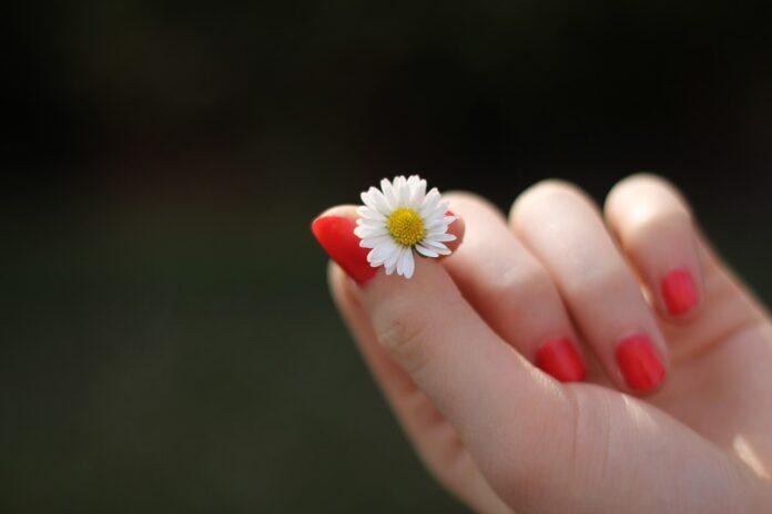 alimenti-rafforzare-unghie