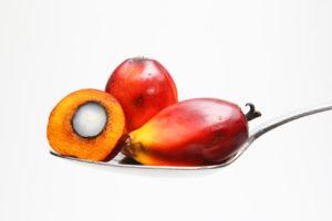 olio di palma effetti