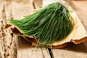verdura-di-stagione-agretti