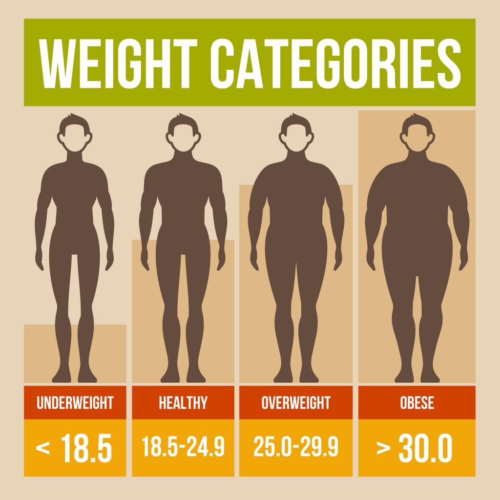 calcolo indice massa corporea