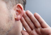 orecchie a sventola