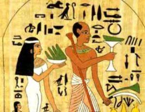 aloe vera egizi