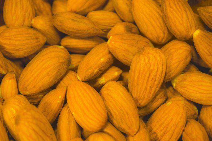 frutta-secca-benefici