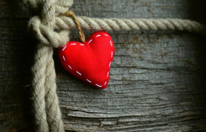 amamelide-per-cuore