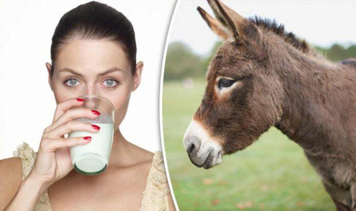 latte-asina-benefici-proprietà