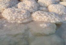 sali-del-mar-morto-come-si-usano-dove-si-comprano